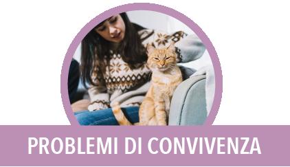 problemi di convivenza con il gatto