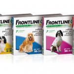 frontline combo antiparassitario per cane e gatto