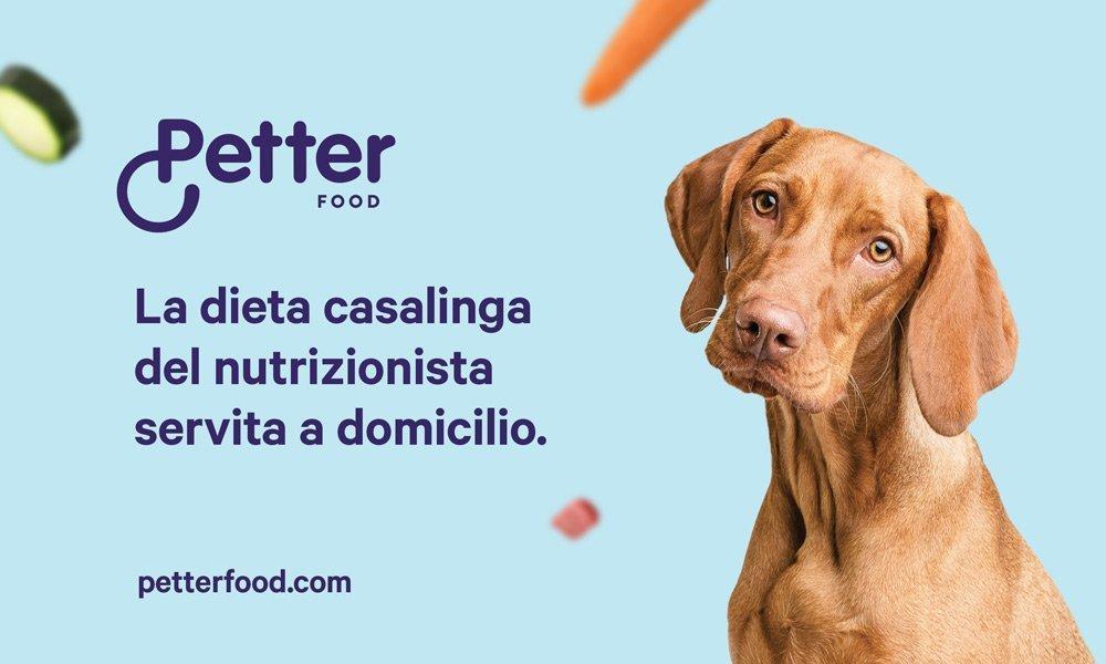 alimentazione casalinga cani