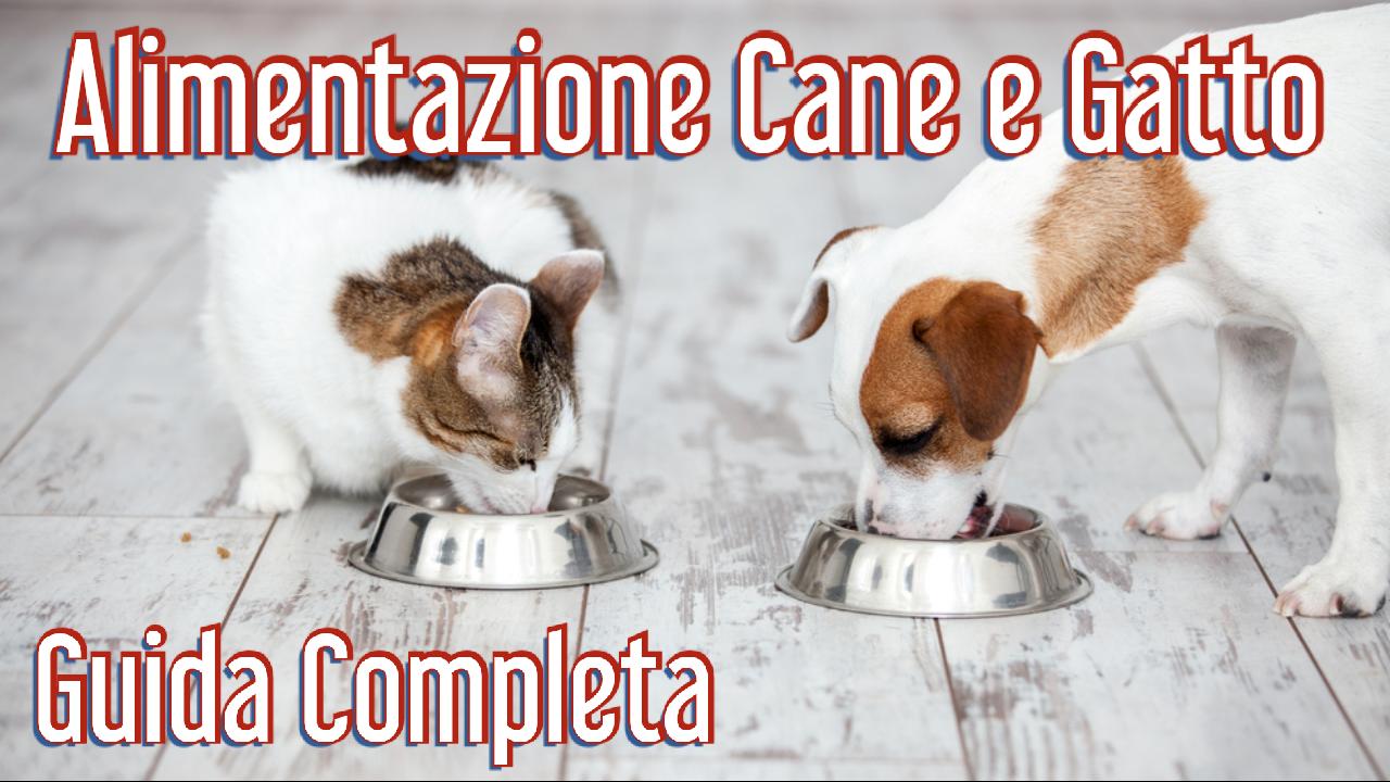 Alimentazione Cane e Gatto Guida Completa